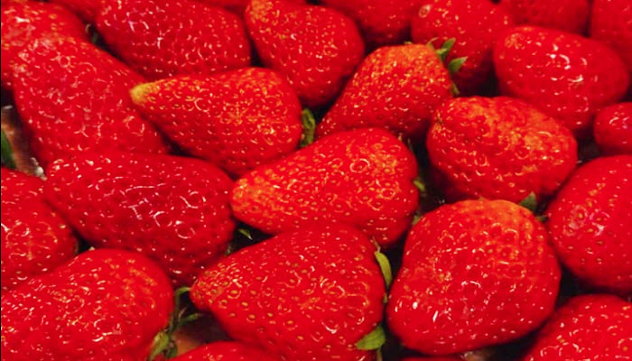 真っ赤なイチゴ